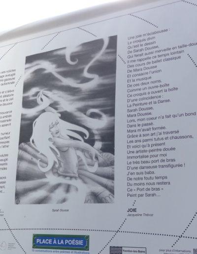 Place à la poésie _Danse avec la brume_27.6.14