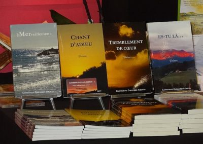 Salon du livre Genève mai 2013