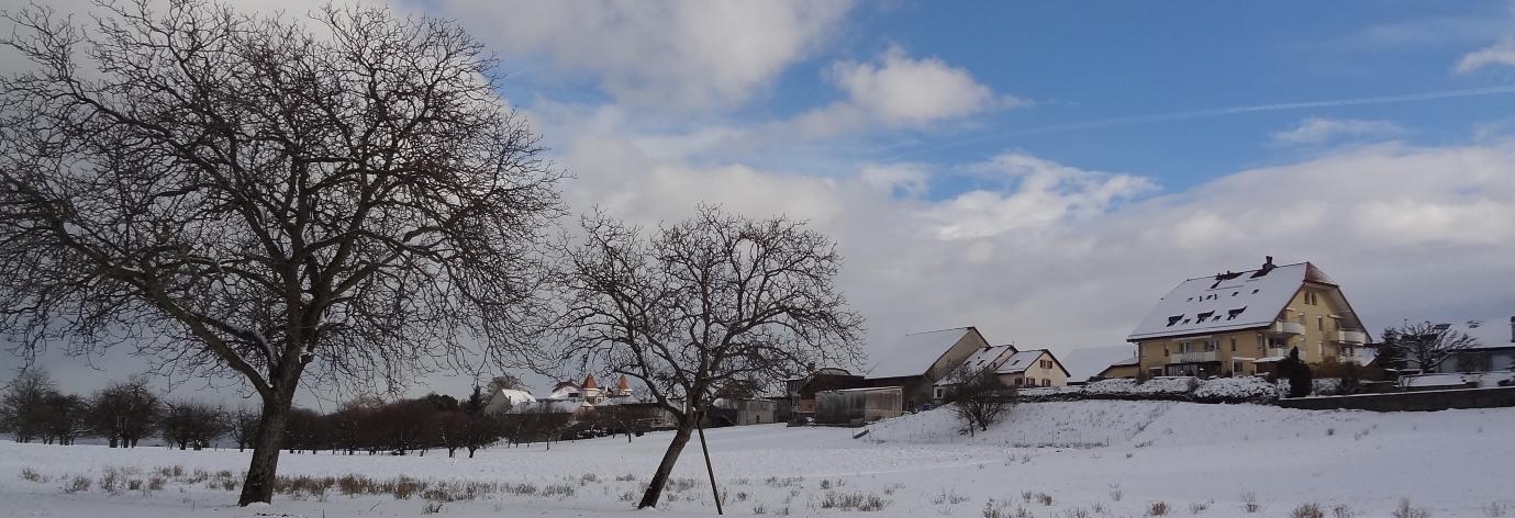 Photo illustrant le poème la 1ère neige, poème de Catherine Gaillard-Sarron